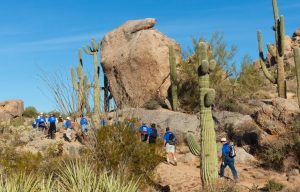 HIking in the Sonoran Desert