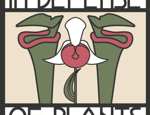 Parson's Field Institute Associate Director Helen Rowe featured in podcast, In Defense of Plants